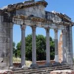 Apollonia3-150x150